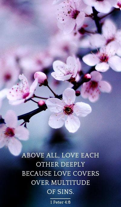 "And above all things have fervent love for one another, for ""love will cover a multitude of sins."" [1 Peter 4:8]"