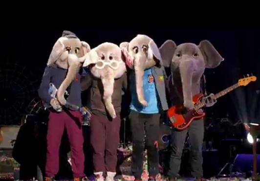 Not only am I obsessed with Elephants, but Coldplay wearing elephant masks?!