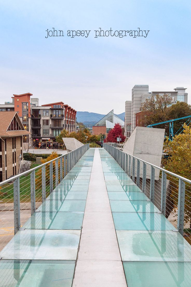 The Holmberg Glass Bridge in Chattanooga Tennessee. I was terrified to walk across it…but managed to do it!