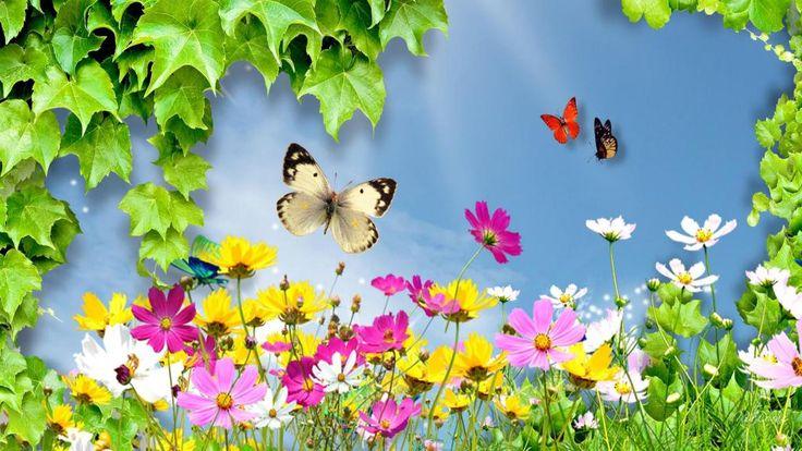 wondere wereld van de wilde bloemen hd wallpaper. Hier kan je gratis wondere wereld van de wilde bloemen van hoge resolutie bureaublad achtergrond voor breedbeeld, foto's in HD-breedbeeldscherm van hoge kwaliteit resoluties voor gratis