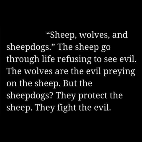 "The ""sheep, wolves, and sheepdogs"" quote from American Sniper is one of my favorite quotes because of how it shows the mentality of the great American soldier and LEO."