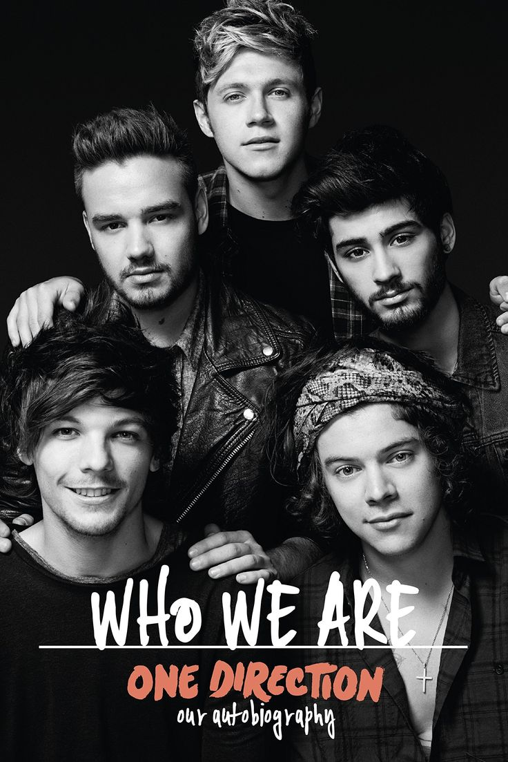 One Direction: Who We Are: Our Official Autobiography: Amazon.co.uk: One Direction: Books