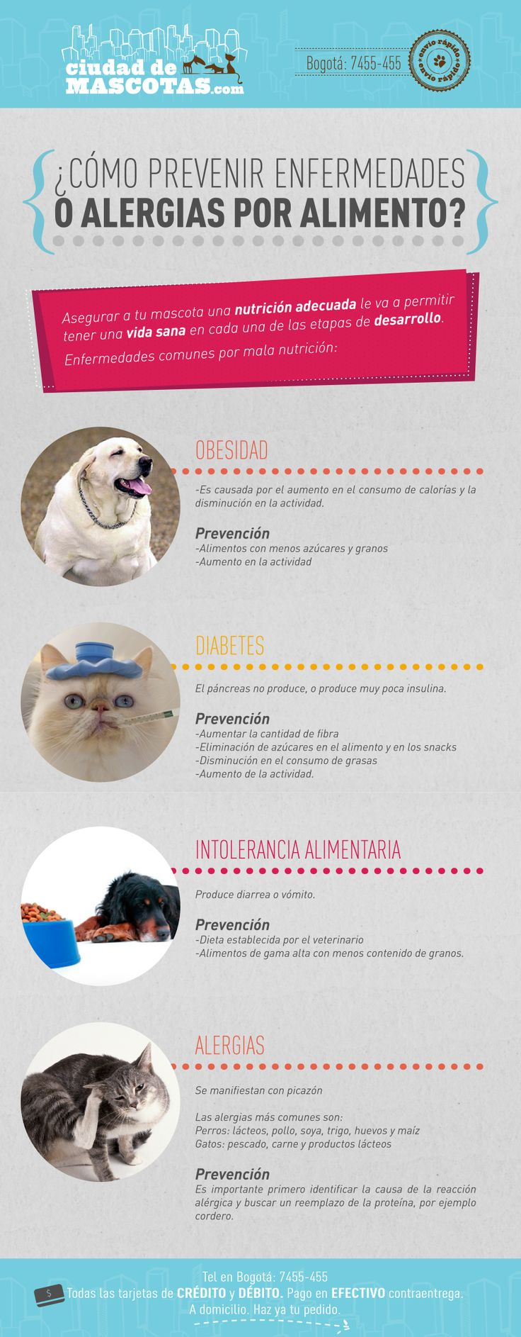 Cuidar la salud nutricional de tu mascota le provee una mejor calidad de vida. El alimento de tu perro y de tu gato es la base fundamental de su salud. Si quieres saber más de nutrición haz clic aquí http://mi.ciudaddemascotas.com/alimento-holstico-perros-y-gatos