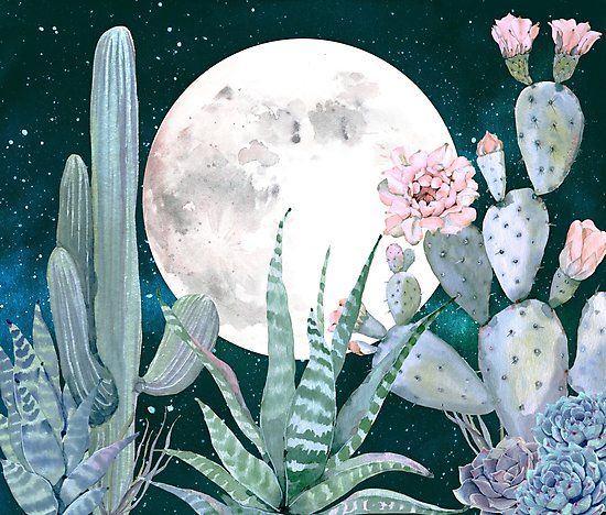 Cactus Night Pretty Pink and Blue Desert Stars Cacti Illustration / Gorgeous desert southwestern cactus design in shades of pastel pink turquoise teal blue green rose gold pink quartz and millennial pink. Trendy watercolor painting drawing of cacti succulents in the southwest desert. Dream of a vacation in California, Arizona, Utah, or Mexico with these beautiful pale light pink and blue cactus designs. / desert saguaro succulents cactus cacti cactuses cactusses southwestern southwe...