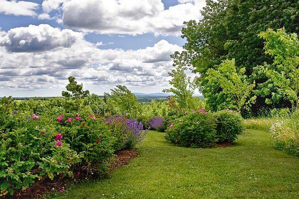 rural hillside residence landscape design