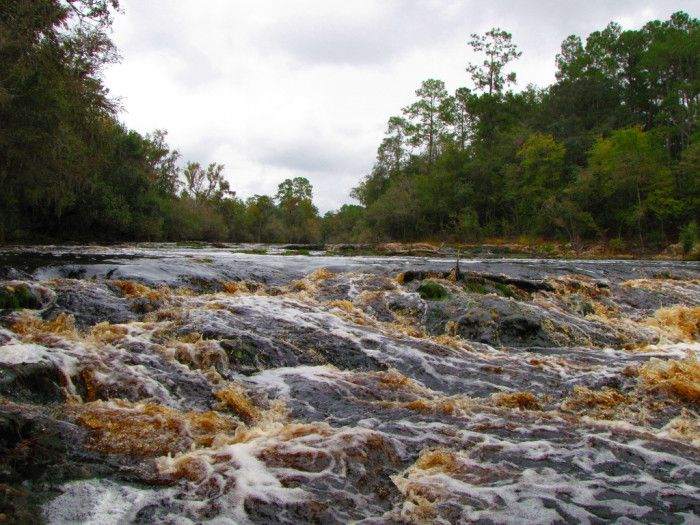5. Big Shoals State Park Big Shoals is located approximately a mile east of White Springs, FL, and home to the largest whitewater rapids in Florida