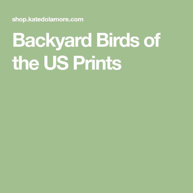 Backyard Birds of the US Prints
