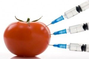 Chemia w żywności
