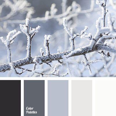 almost black, beige color, graphite gray, gray color, light gray, shades of gray, shades of winter, snow color