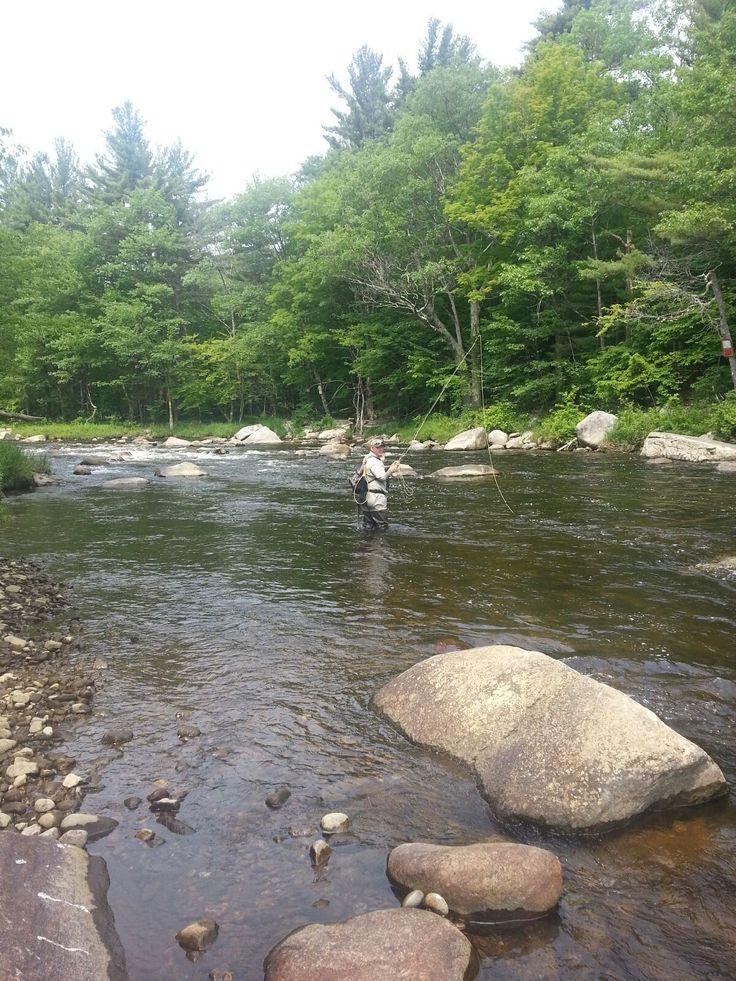 33 best adirondack fly fishing images on pinterest for Adirondack fly fishing