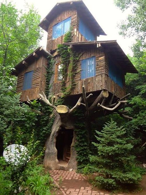 Best Tree Houses Images On Pinterest The Tree Live And - Contemporary banyon treehouse california