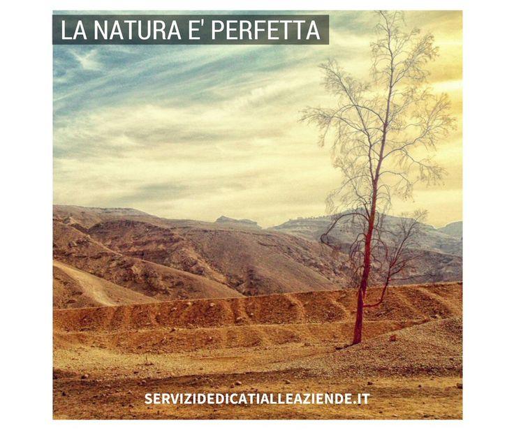 In natura niente è perfetto e tutto è perfetto. Gli uomini hanno il dovere di rispettarla  e preservarla. Condividi ?