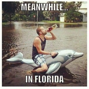 hurricane party of one