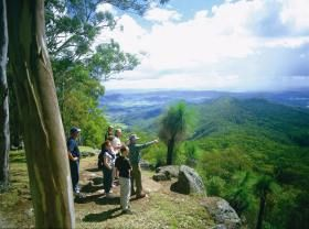 Gold Coast Hinterland Great Walk  - Things To See and Do - Queensland Holidays