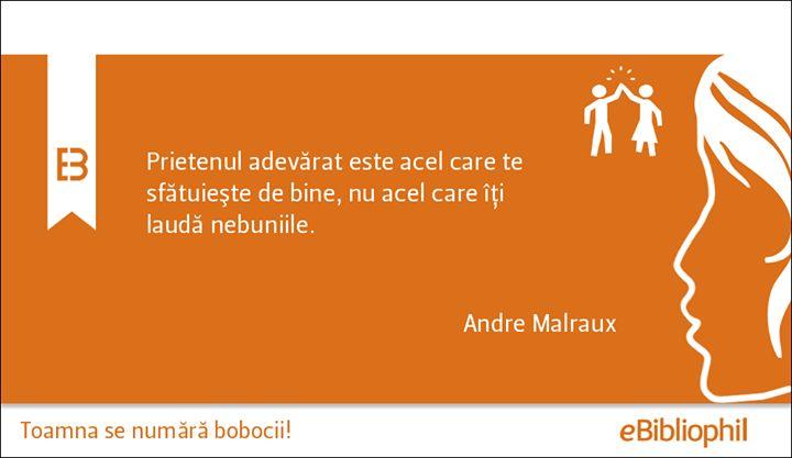 """""""Prietenul adevărat este acel care te sfătuiește de bine, nu acel care îți laudă nebuniile."""" Andreo Malraux"""