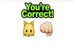 Guess The Emoji  http://allemojianswers.com/guess-the-emoji/guess-the-emoji-level-39-cat-and-fist-3