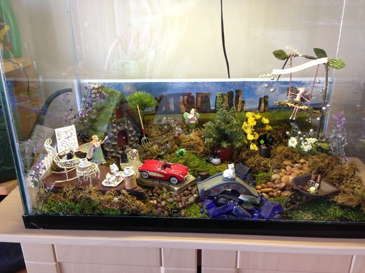 my fairy garden  in an old aquarium  so my wee ones can look  not touch  destroy