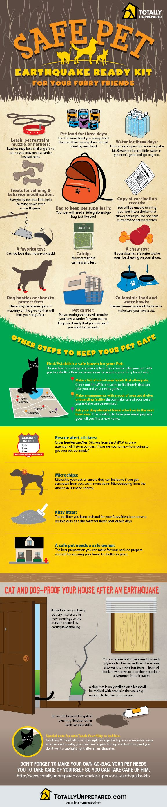 Are your pets prepared for an earthquake? Here's a checklist on what to include in their emergency bag - Infographic