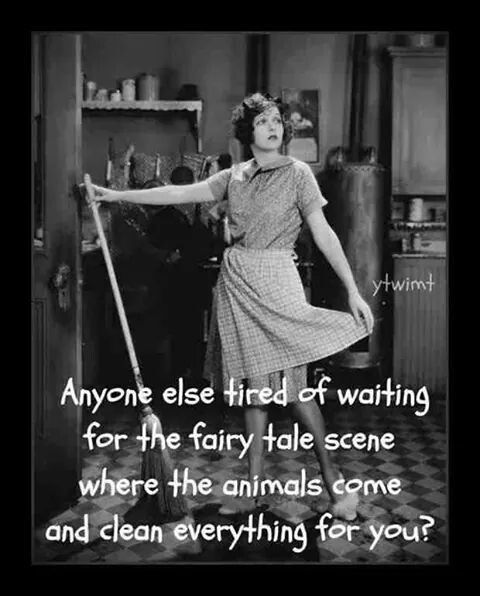 Funny Housework Memes : Best cleaning fun images on pinterest funny stuff