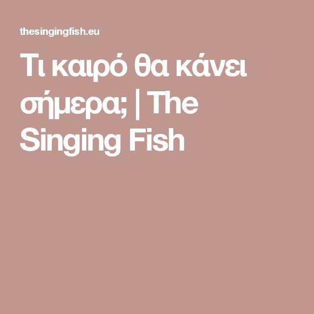 Τι καιρό θα κάνει σήμερα; | The Singing Fish