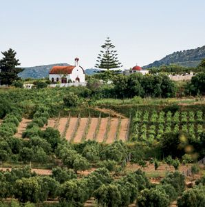 VISIT GREECE| In Greece—between the Peloponnese, Macedonia, and the shores of Crete, welcoming people, seductively simple food, and unforgettable Greek wines.