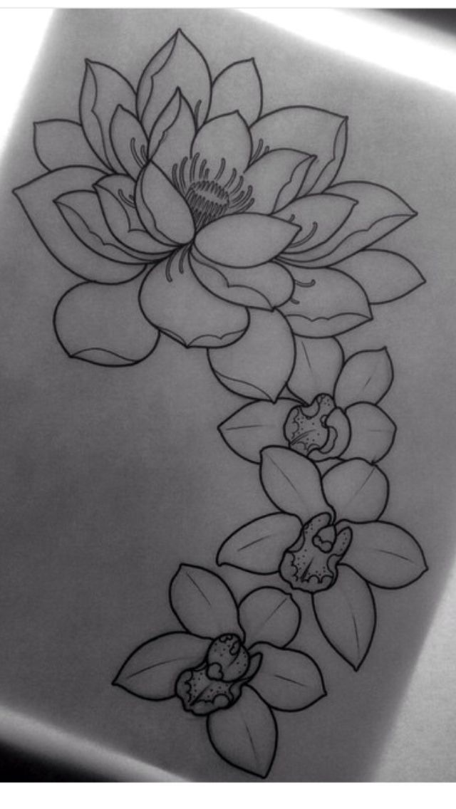 Lotus flower----- I like the shape of that flower too, but not the orchids with it.