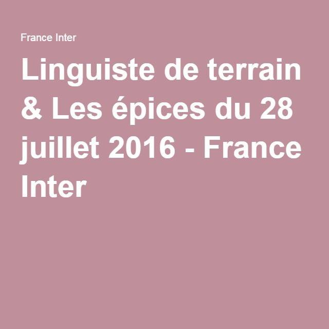 Linguiste de terrain & Les épices du 28 juillet 2016 - France Inter
