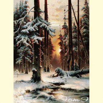 116 Зимний Закат в Еловом Лесу