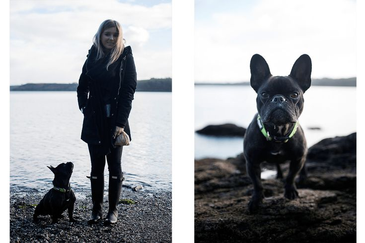 Photographing Your Pet | You'll Find Me by the Sea