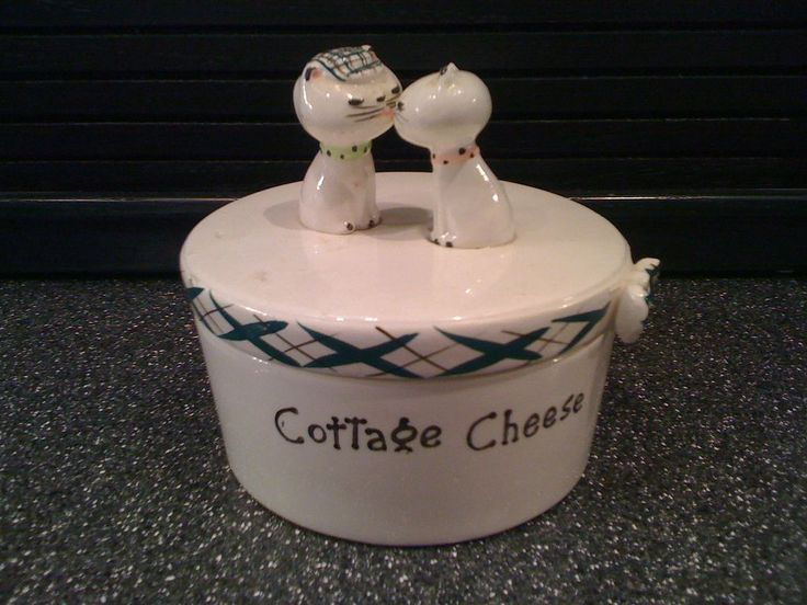 is cottage cheese good for cats