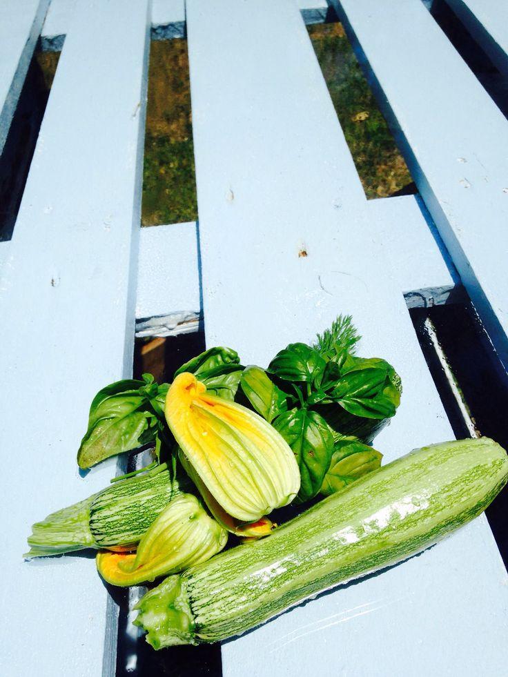 Fresh food, organic food,