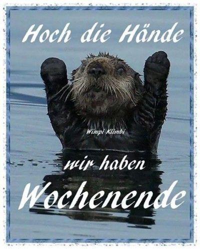Hoch die Hande, wir haben Wochenende! Hands up, we have weekend!