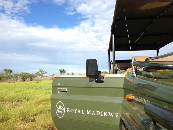 DayTreasure: Royal Madikwe - Madikwe Game Reserve