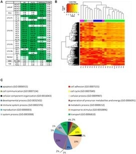 mRNA-Sequencing of Single Prostate Cancer Circulating Tumor Cells