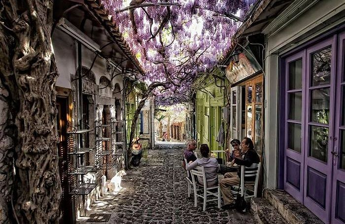 Molyvos - ancient Mythimna, Lesvos. A magical street leading up to the castle - shaded by ancient wisterias. Check out our Lesvos holidays for 2016.
