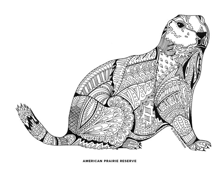 17 best images about buildyourpark adult coloring book on for Prairie dog coloring page