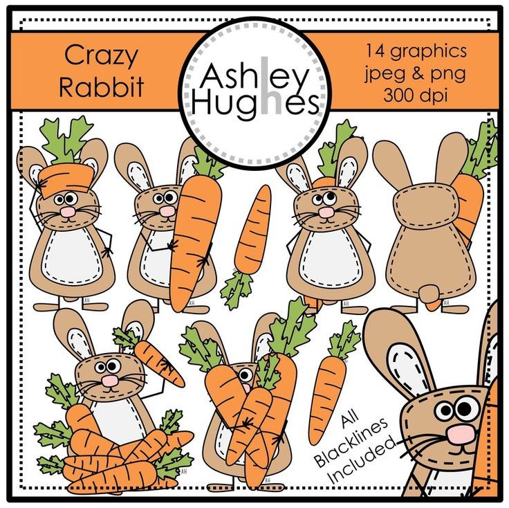 $ Crazy Rabbit: Graphics/Clipart for Commercial Use