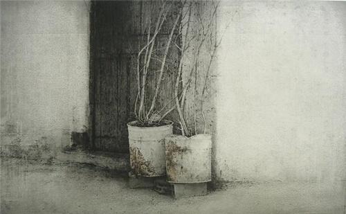 Carlos Morago(Spanish, b.1954)  Dos macetas 2010