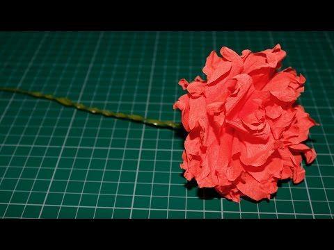 Como fazer uma Flor de Papel Crepom (Cravos) - YouTube