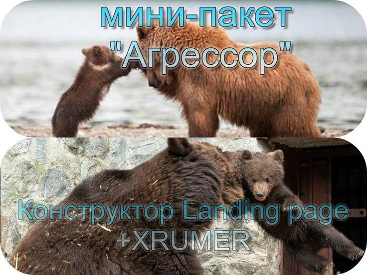 Если найдёте в Рунете цены дешевле, сообщите нам! Мы сделаем Вам Интернет-магазин или Корпоративный сайт бесплатно! / seorus