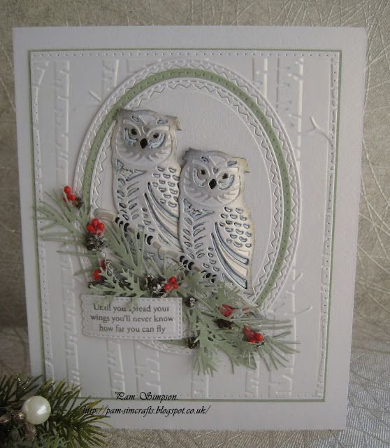 Good morning everyone.     Some thing really different from me today!    Amy Designs Wintertide Owl.     love owls ..thought this beauty w...