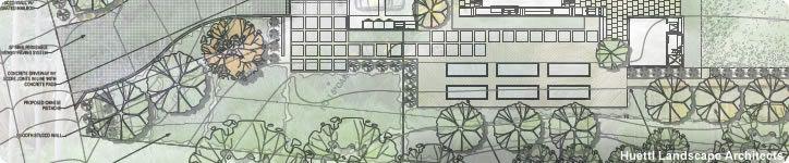 Passive Solar Landscaping for Energy Efficiency