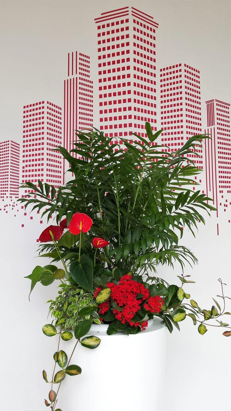 I grattacieli e i fiori di AZ case!