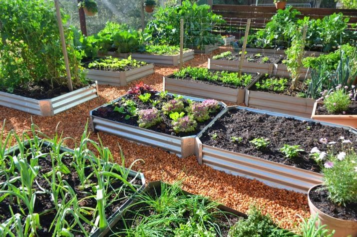 How Many Square Feet Of Raised Planter Beds