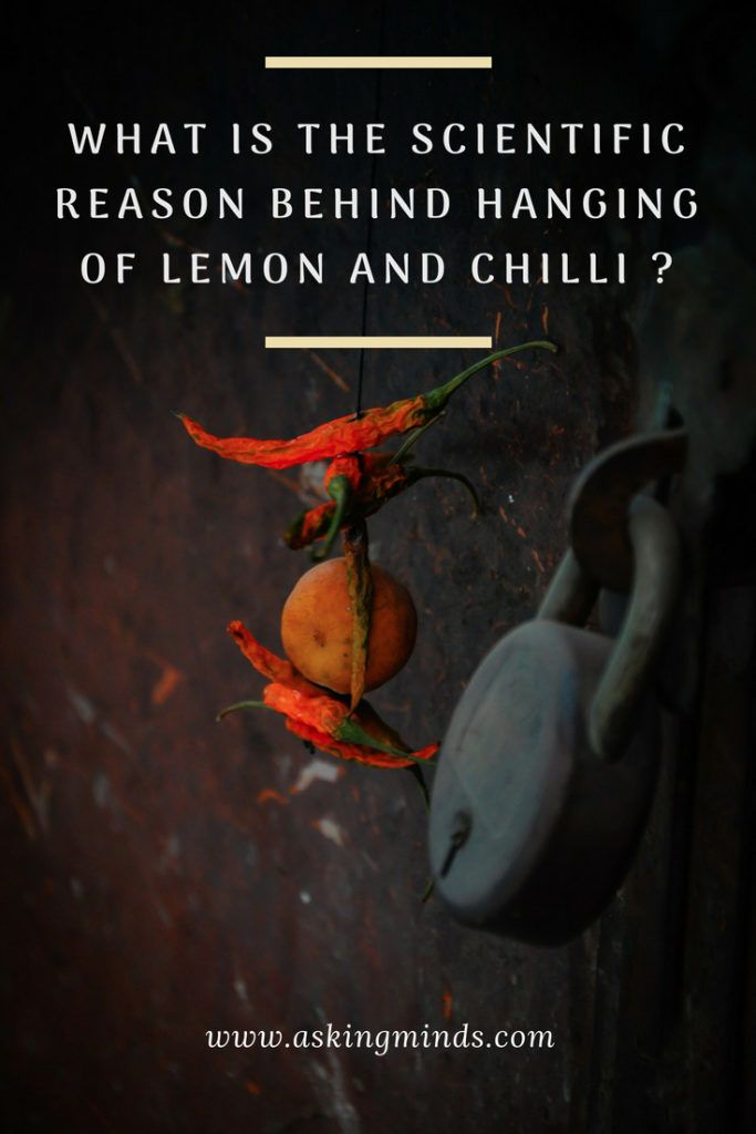 What is the scientific reason behind hanging of lemon and chilli? - science and ... 2