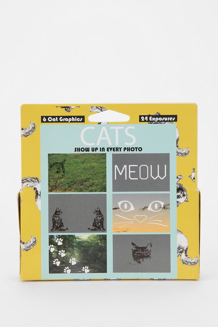 Cats - Disposable Camera with pre-printed cat imagery on it. Fun ...