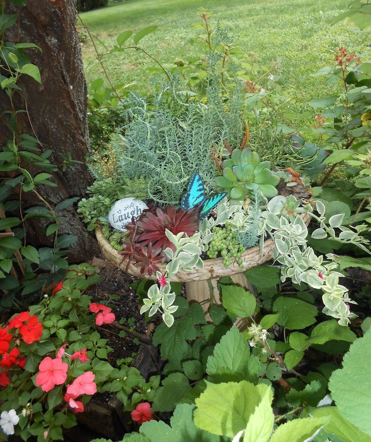 69 Best Images About Bird Bath Garden Planters On