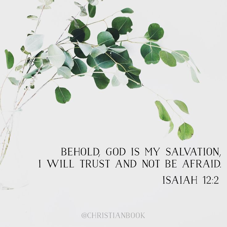 Behold, God is YOUR salvation. TRUST and do not be afraid. Isaiah 12:2