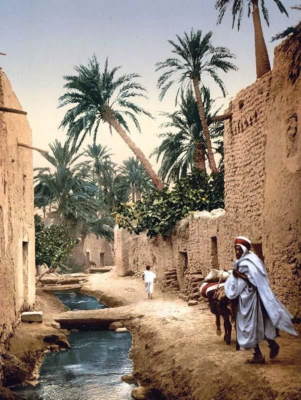 Biskra, Algeria 1899.  I reckon this is where the location team got part of their inspiration for the Middle/Eastern sections of the Indiana Jones movies.