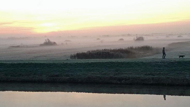 Mistige ochtend in natuurgebied het Bossche Broek in 's-Hertogenbosch